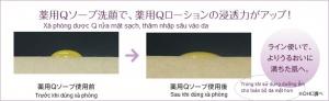 DHC- medicinal Q soap-1