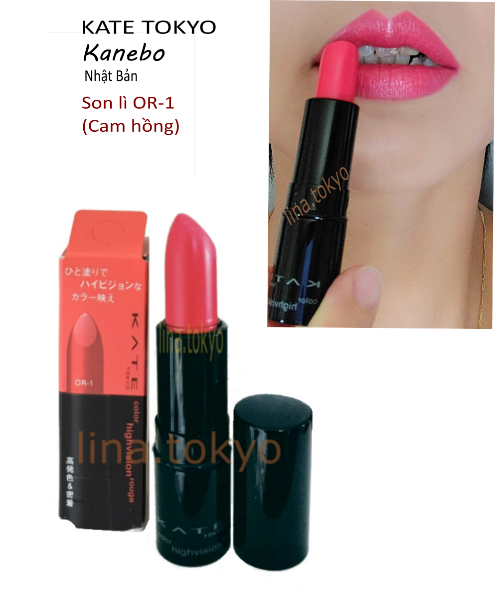 N30023-Kate Color Highvision Rouge
